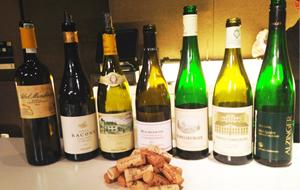 IV Curso de cata de vinos