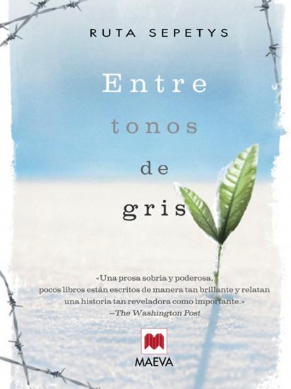 Libro-Entre tonos de gris